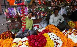 Ganpati Decoration Ideas Fresh Flower Market Ganpati Decorations